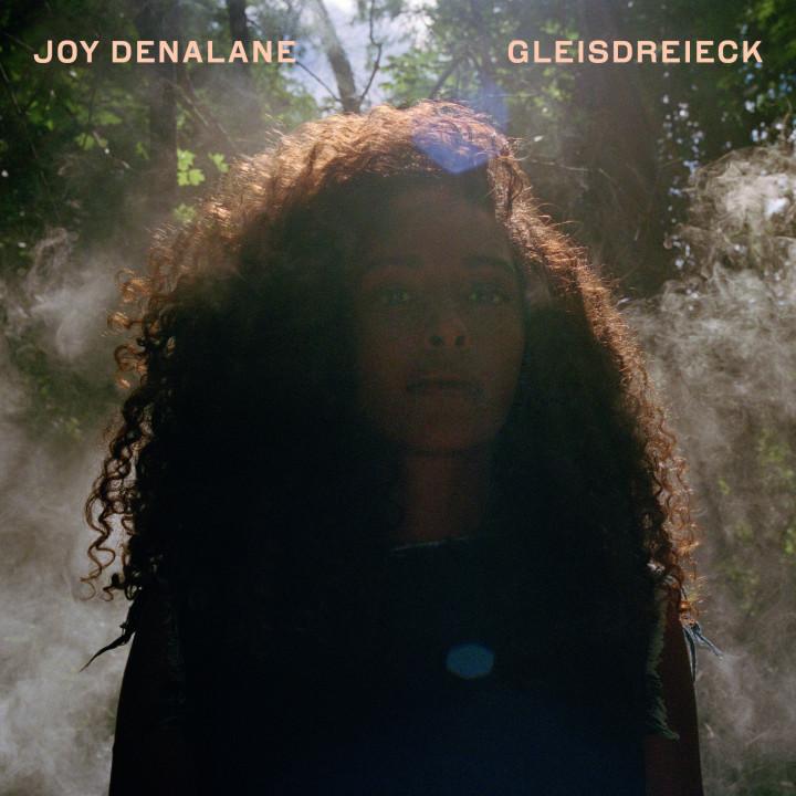 Albumcover Joy Denalane Gleisdreieck