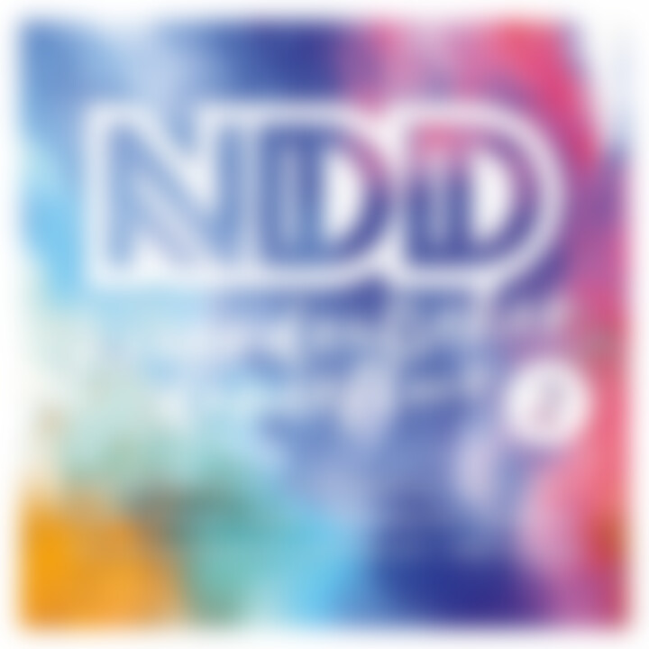 NDD - Neuer Deutscher Dancefloor 2