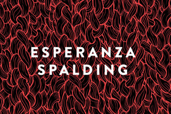 Esperanza Spalding bei Spotify