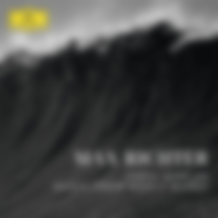 Max Richter: Music from Woolfworks