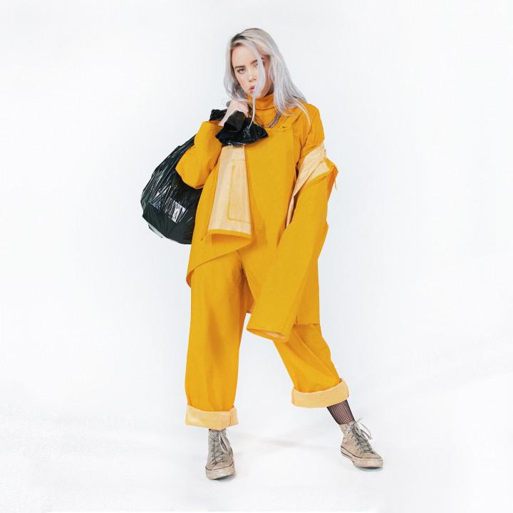 NICHT VERWENDEN Billie Eilish Cover Bellyache 2017