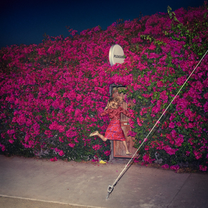 Feist — Pleasure 2017