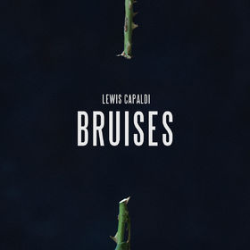 Lewis Capaldi, Bruises, 00602557660531