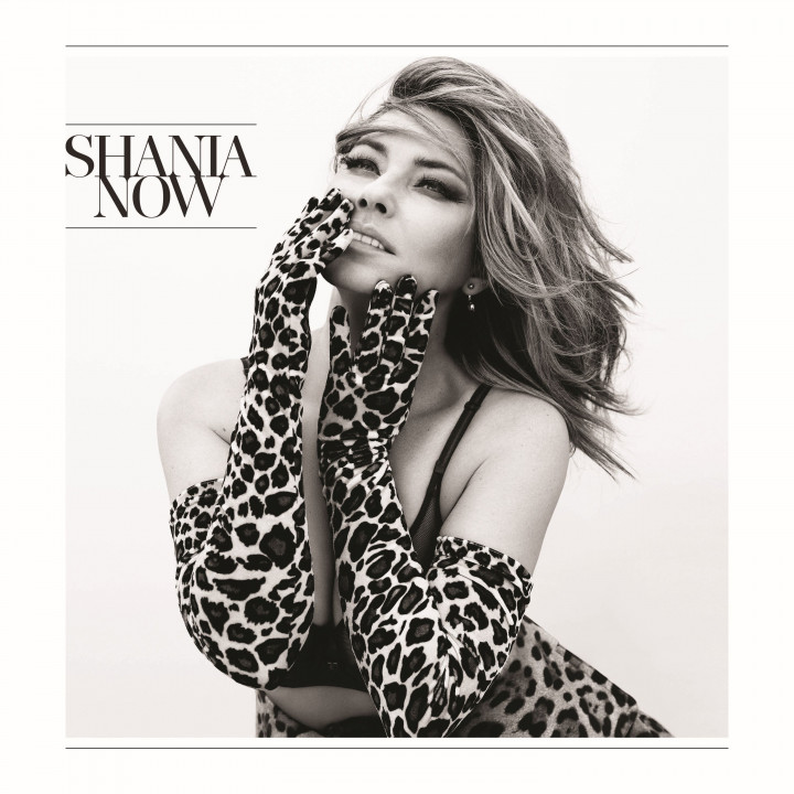 Shania Twain Now Album-Cover