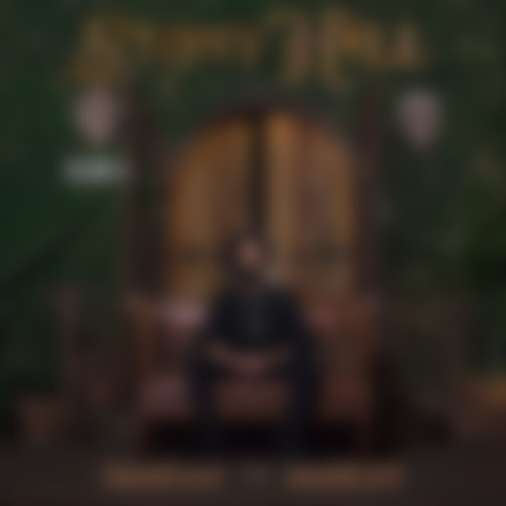"Cover ""Stony Hill"" Damien Marley 2017"
