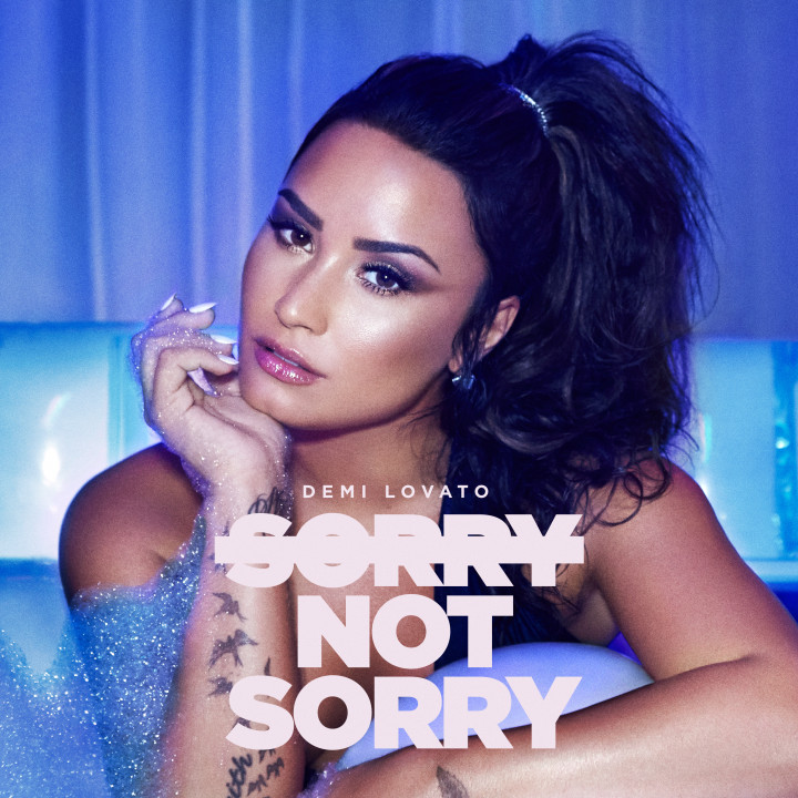 Demi Lovato sorry not sorry cover