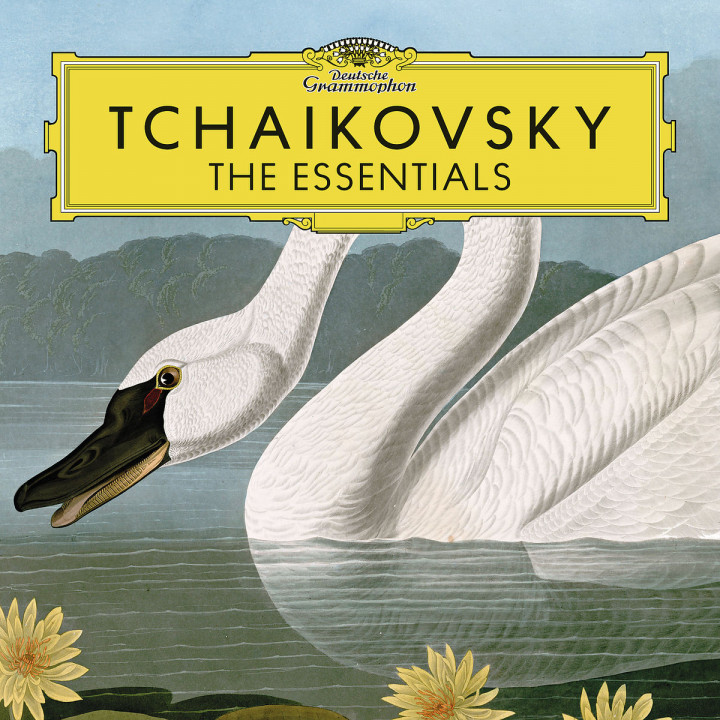 Tchaikovsky: The Essentials