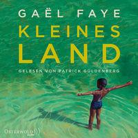 Patrick Güldenberg, Gael Faye: Kleines Land, 09783869523736