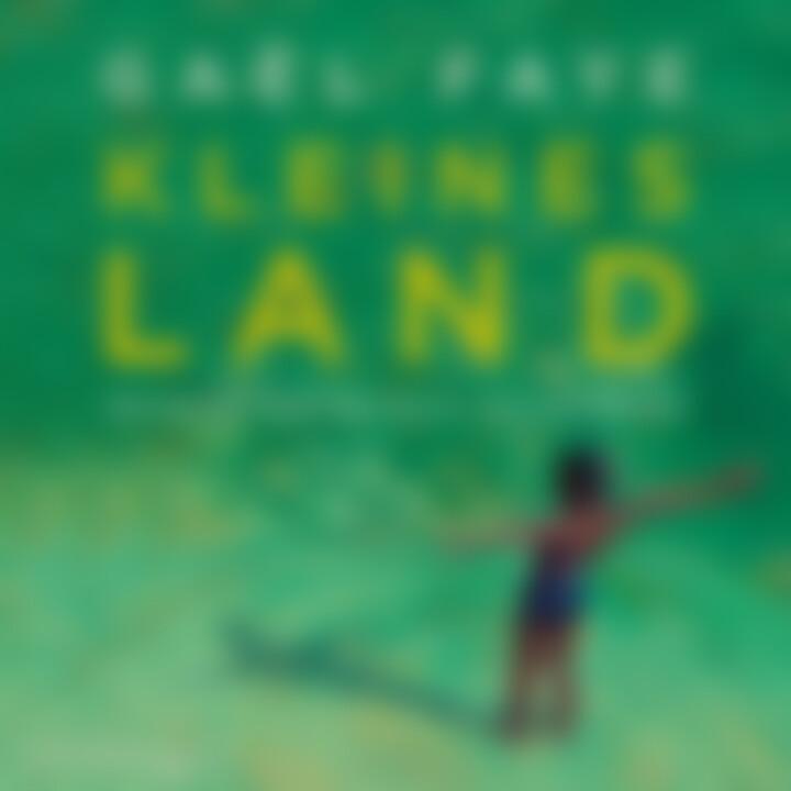 Gael Faye: Kleines Land