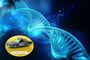 Auf Streife im Netz, Tutu als DNA - Miles Davis für die Ewigkeit
