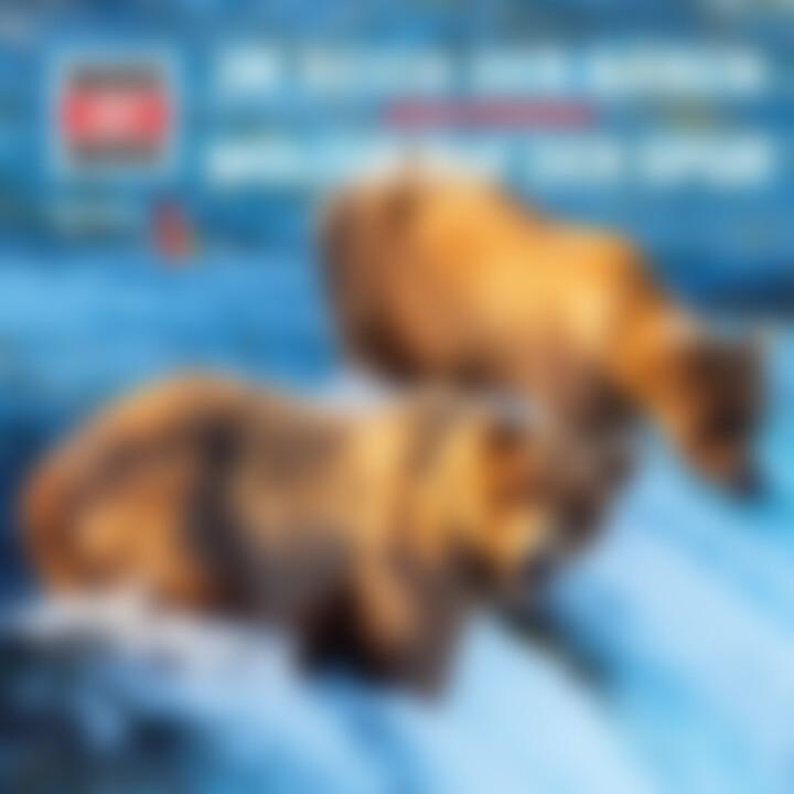 WiW Bären und Wölfe Cover
