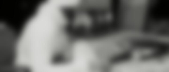 Giftig / Genau so ft. Veysel