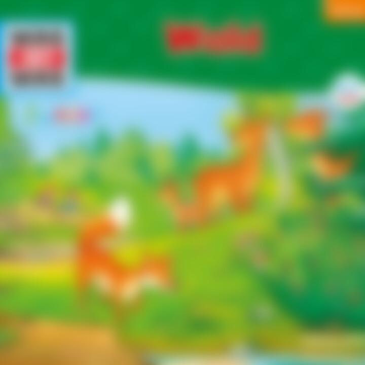Folge 11: Wald