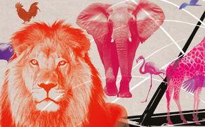 Der Karneval der Tiere, Verblüffend originell - Das Jussen-Duo lässt mit Katja Riemann den Karneval der Tiere in gänzlich neuem Licht erscheinen