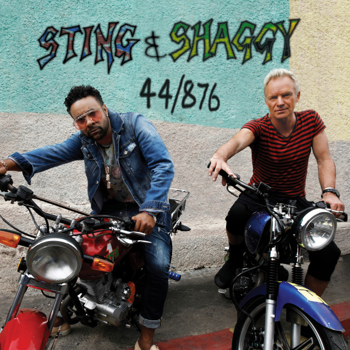 Cover Sting Shaggy 44 876