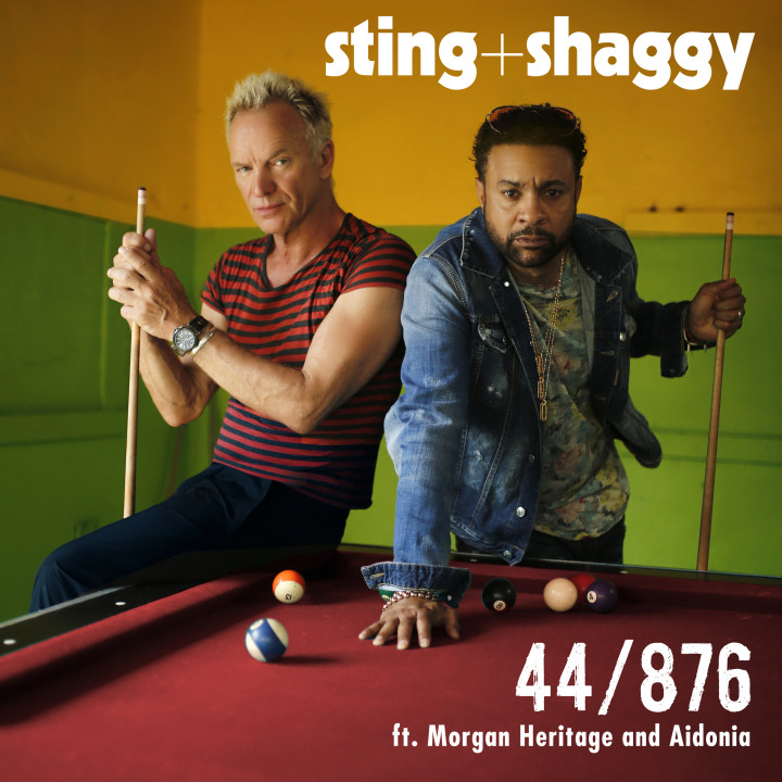 Sting Shaggy Single 44876