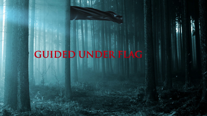 Guided Under Flag