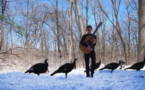 ECM Sounds, Steve Tibbetts - Musik von menschlicher, handgefertigter Qualität ...
