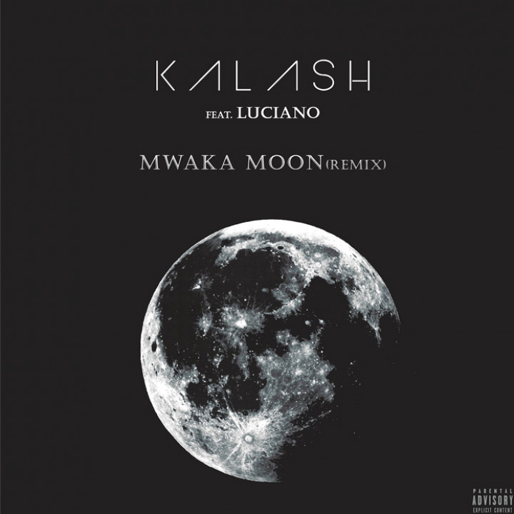 Kalash feat. Luciano - Mwaka Moon Remix Cover v2 adjusted