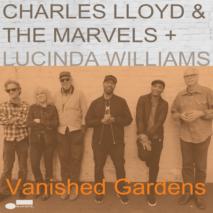 Vanished Gardens (LP)