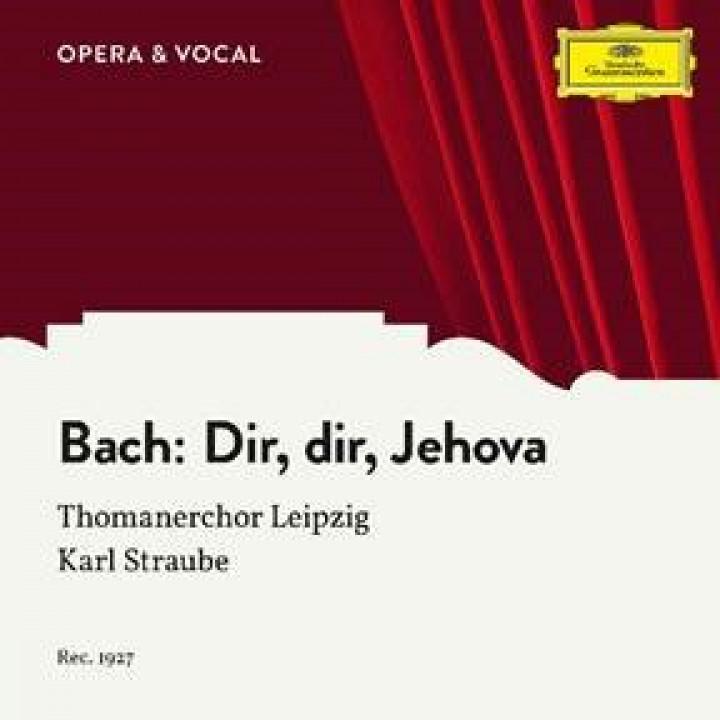 Bach: Dir, dir, Jehova