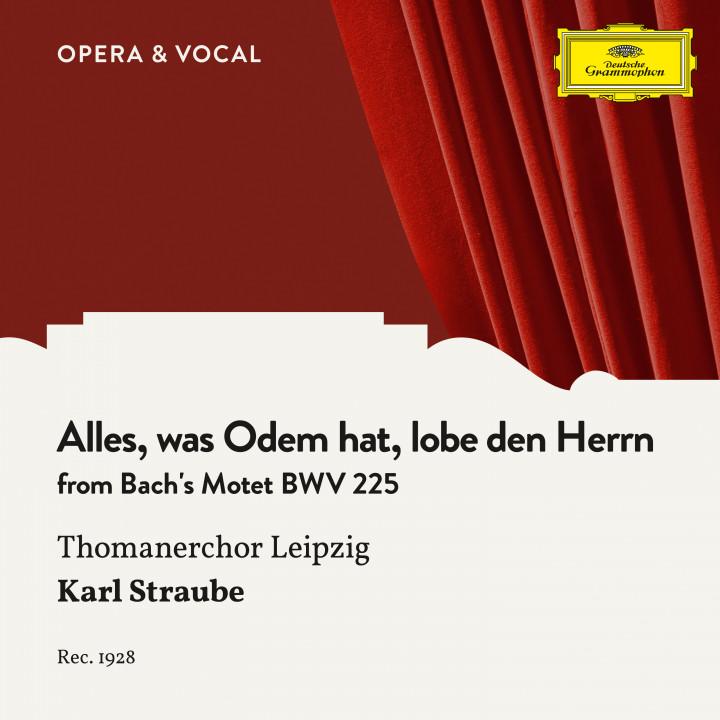 Bach: Alles, was Odem hat, lobe den Herrn
