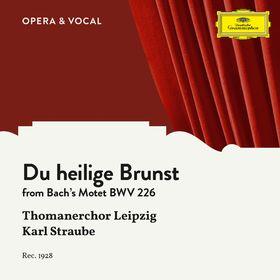 DG120, J.S. Bach: Du heilige Brunst, 00028948358397
