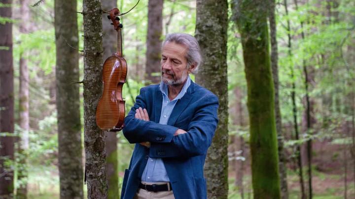 Bach: Sonatas & Partitas (Teaser)