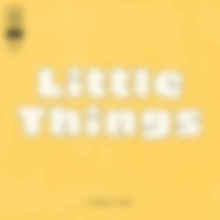 little things cover