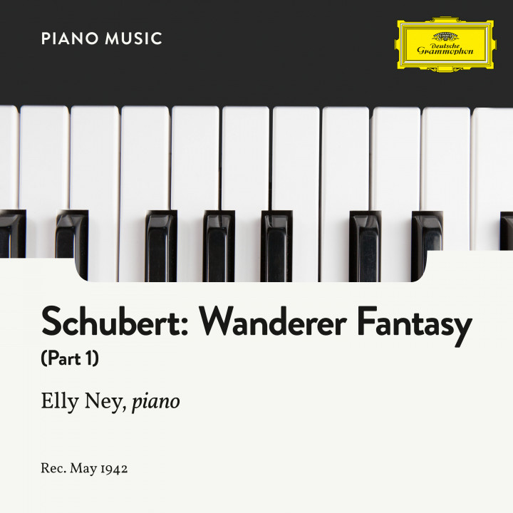 Schubert: Wanderer Fantasy In C, Op. 15: Part I