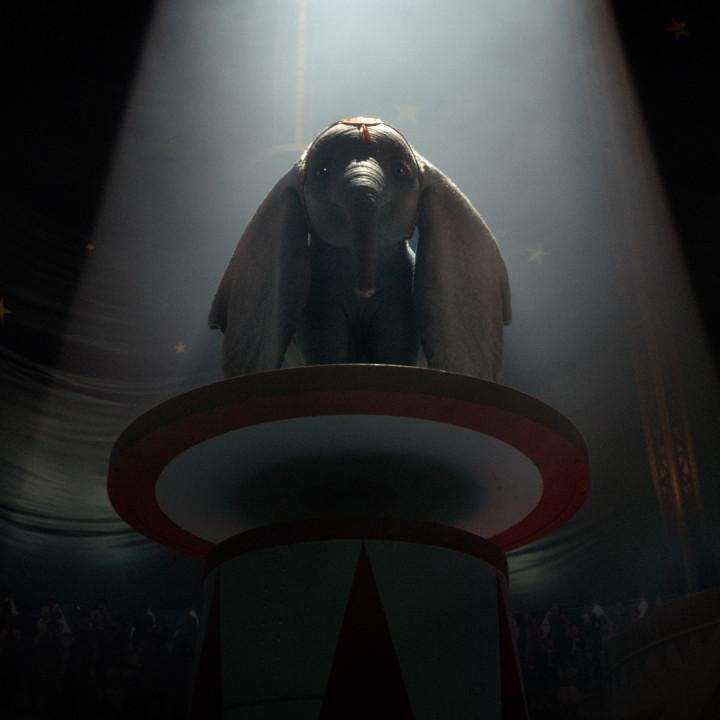 Dumbo Szenenbild 3