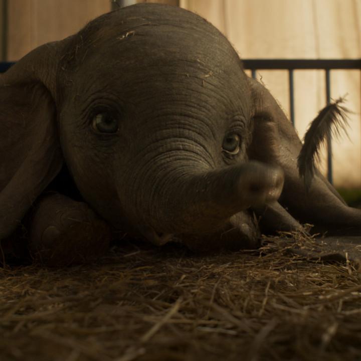 Dumbo Szenenbild 10