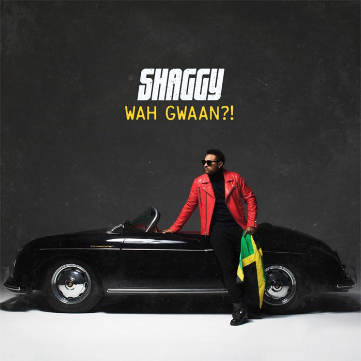 Shaggy - Wah Gwaan?! Album Cover