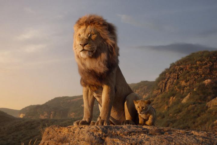 Der König der Löwen Soundtrack News