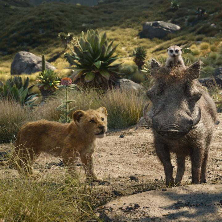 Der König der Löwen—Szenenbild 1