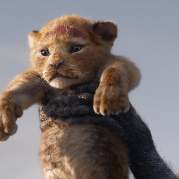 Der König der Löwen—Szenenbild 2