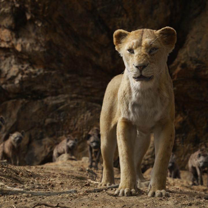 Der König der Löwen—Szenenbild 3