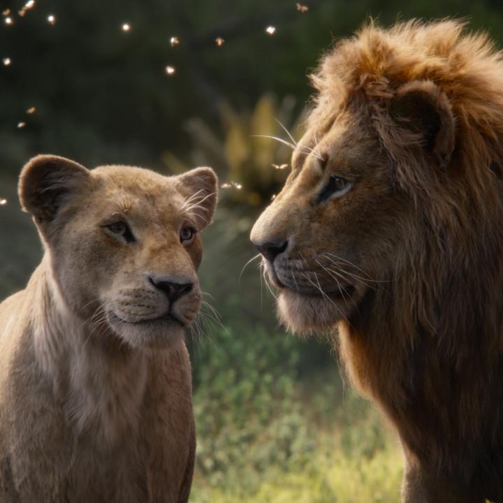Der König der Löwen—Szenenbild 5