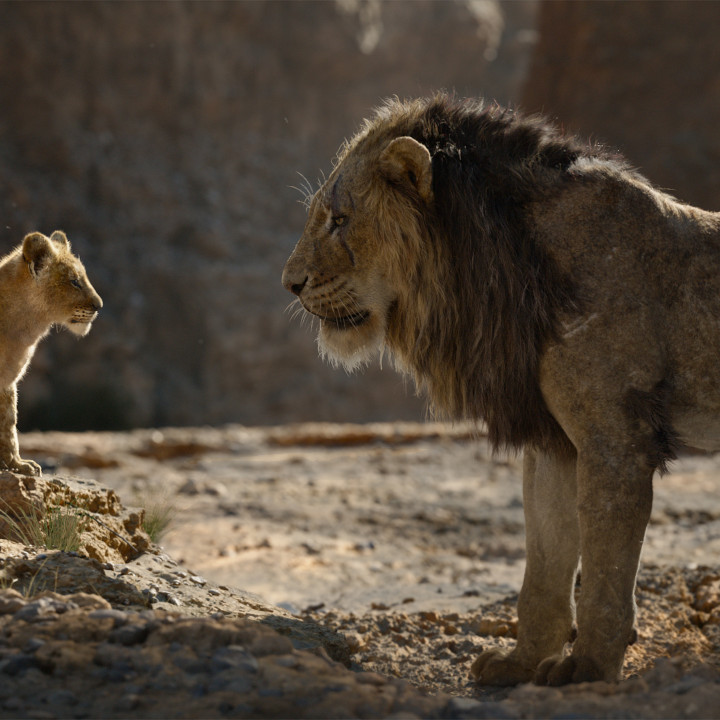 Der König der Löwen—Szenenbild 6