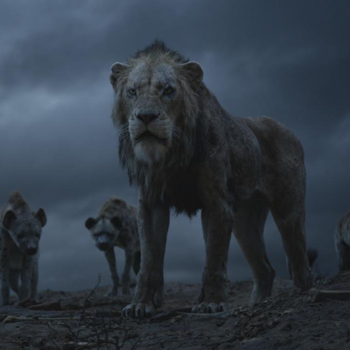 Der König der Löwen—Szenenbild 7