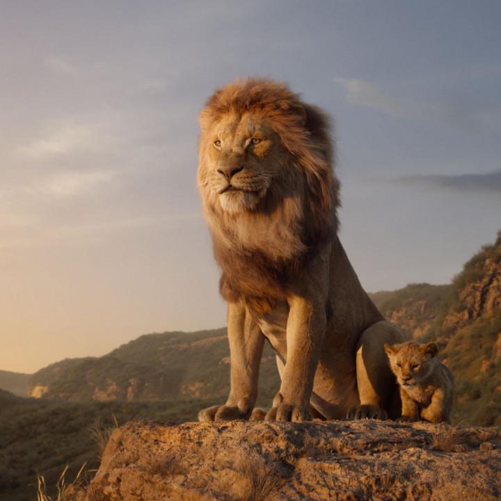 Der König der Löwen—Szenenbild 8