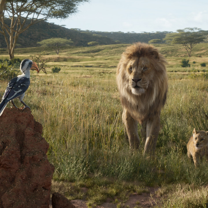 Der König der Löwen—Szenenbild 9
