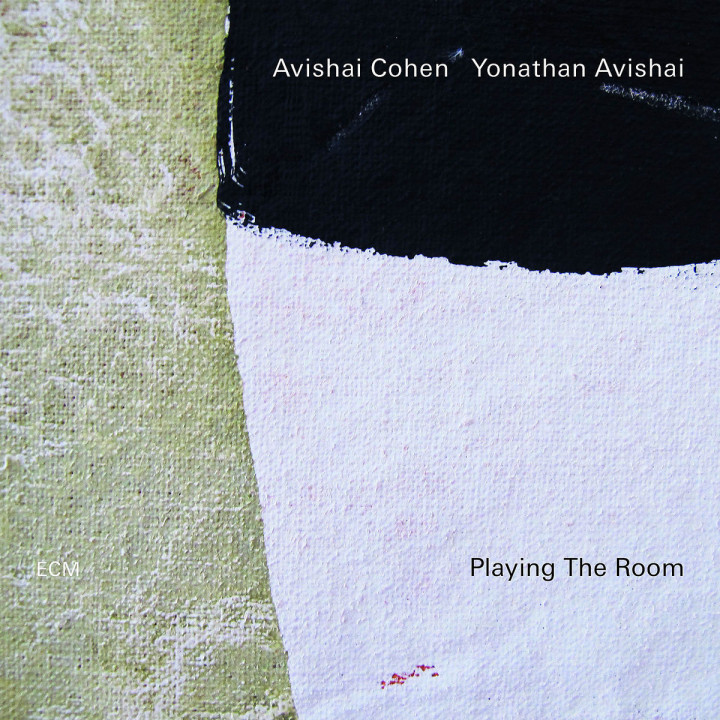 Playing The Room (LP)