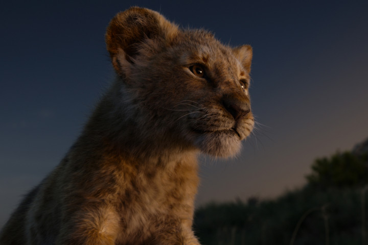 Der König der Löwen - News Platz 1 Kinos