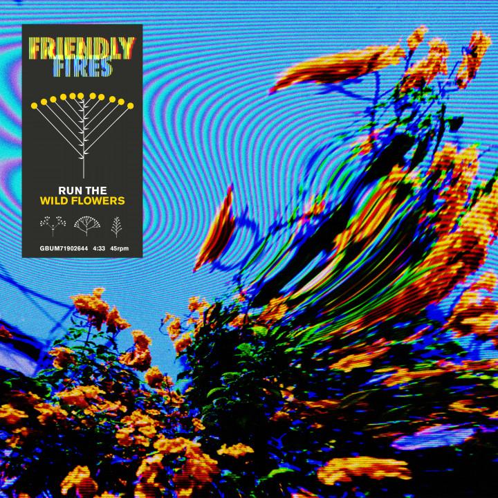 "Friendly Fires - ""Run The Wild Flowers"""