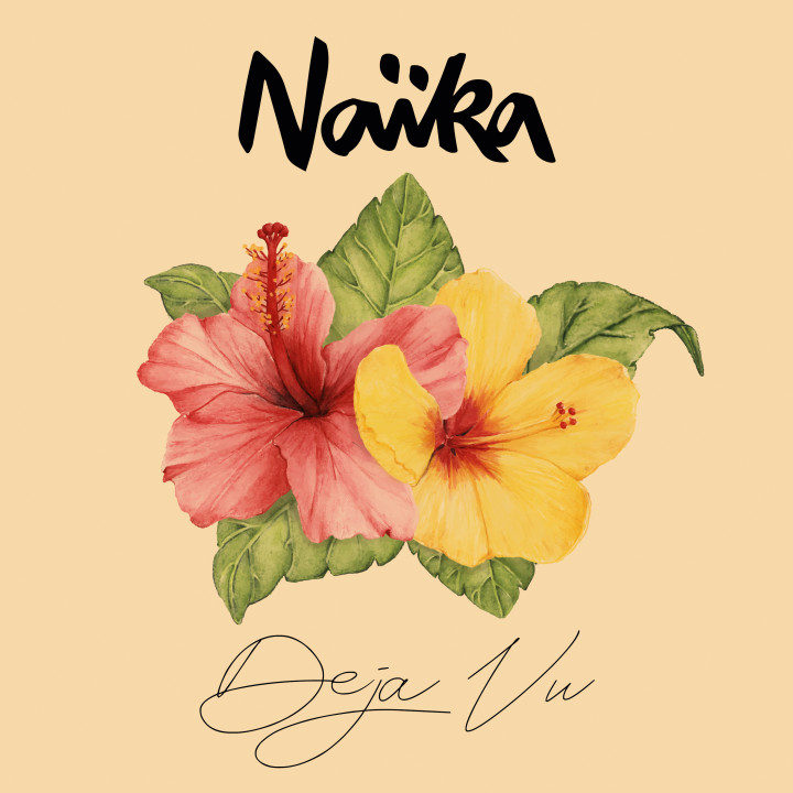 Naika Deja Vu Cover