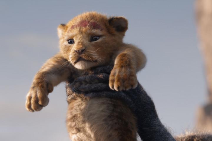 Der König der Löwen Newsbild