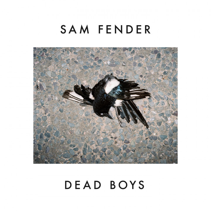 Sam Fender Dead Boys Cover