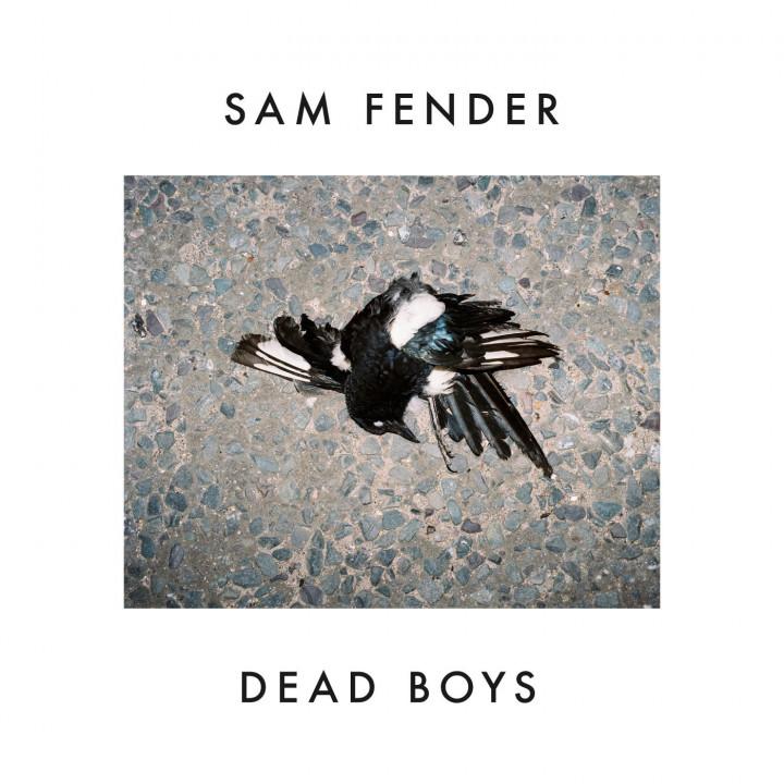 Sam Fender Dead Boys Cover