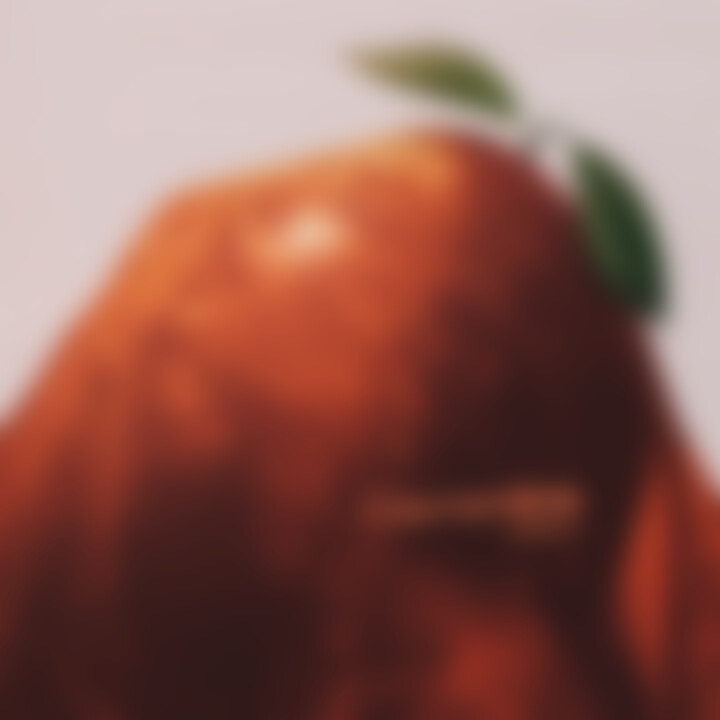clementine halsey